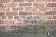 Oude Vuile Bakstenen muur met Schimmel en Vorm het Groeien royalty-vrije stock afbeelding