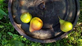 Oude vuile zwarte pandekking met drie geelgroene peren stock afbeeldingen