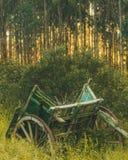 Oude wagen in het midden van de grassen bij zonsopgang stock foto's