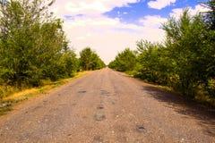Oude weg in de zomer Royalty-vrije Stock Foto