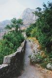 Oude weg langs de vesting in Montenegro royalty-vrije stock foto