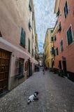 Oude weg in Ligurië royalty-vrije stock foto's