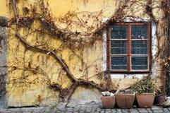 Oude werf met venster Royalty-vrije Stock Afbeelding