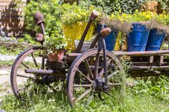 Oude wiel houten kar met bloempotten in de tuin Karpatische Bergen in de zomer ukraine stock afbeelding