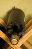 Oude wijnfles Stock Afbeelding