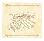 Oude wijngaard Stock Illustratie