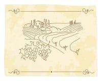 Oude wijngaard Vector Illustratie