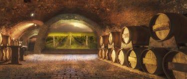Oude wijnkelder royalty-vrije stock afbeelding
