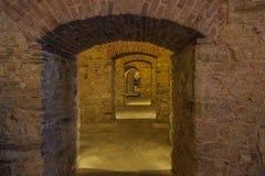 Oude wijnkelder in sveta Trojica stock foto