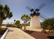Oude windmolen in Antigua Royalty-vrije Stock Afbeelding