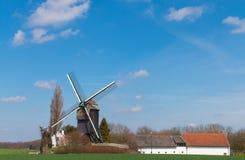 Oude windmolen op een gebied van Vlaanderen Stock Foto