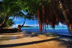 Oude winkelhaak en getijde van tropisch strand Stock Foto