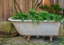 Oude witte badkuip stock foto