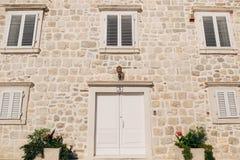 Oude witte deuren Houten Textuur Royalty-vrije Stock Afbeeldingen