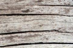 Oude witte houten textuur Royalty-vrije Stock Afbeeldingen