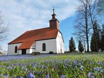 Oude witte kerk, Litouwen royalty-vrije stock afbeelding