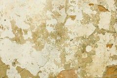 Oude witte muur stock afbeelding