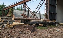 Oude zaagmolen in Colorado Pijnboomhout en gezaagd hout stock afbeelding