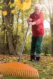 Oudere mens terwijl het werken in de tuin Royalty-vrije Stock Foto