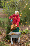 Oudere mens terwijl het werken in de tuin Stock Foto's