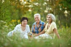 Oudere mensen die op gras rusten Royalty-vrije Stock Fotografie