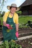 Oudere vrouw in haar tuin Royalty-vrije Stock Fotografie
