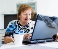 Oudere vrouw met een computer Stock Afbeelding