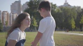 Oudere zuster die haar jongere broer in het de zomerpark berispen Verband tussen siblings Ongehoorzame jongen die lopen met stock footage