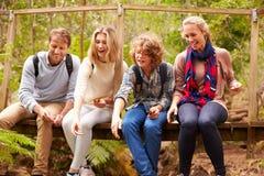 Ouders en tienerjaren spelen, die op een brug in een bos zitten royalty-vrije stock foto's