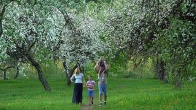 Ouders en zuster met broer met bal in de lentepark in bloeiende tuin stock footage
