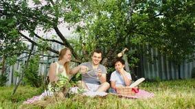 Ouders met hun zoon die picknick in hebben stock footage