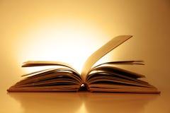 Ouderwets Open Boek Royalty-vrije Stock Foto's