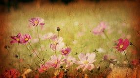 Ouderwetse artistieke bloem royalty-vrije stock foto