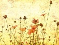 Ouderwetse bloem Stock Afbeeldingen