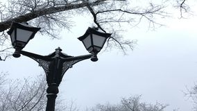 Ouderwetse lantaarn in een de winterpark Alles rond is behandeld met dikke vorst stock videobeelden