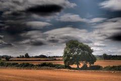 Oughtonhead Gemeenschappelijke gebieden royalty-vrije stock foto's
