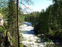 Oulanka Nationalpark lizenzfreie stockfotos