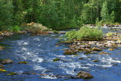 Oulanka nationalpark arkivfoto