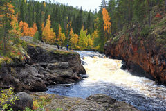 Oulanka river royalty free stock images