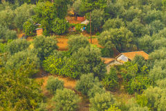Ouled M'ancer village stock photo
