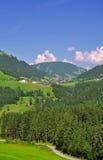 Österrike wildschoenau fotografering för bildbyråer