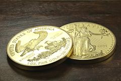 American gold eagle Stock Photography
