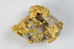 Nevada USA Gold / Quartz Nugget Stock Image