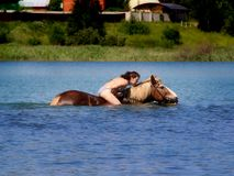 Oung woman floating on the horse`s back. Royalty Free Stock Photo