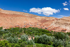 Ounilla谷,摩洛哥,高地图集风景 在Th的圆筒芯的灯树 库存照片