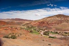 Ounilla谷,摩洛哥,高地图集风景 在Th的圆筒芯的灯树 免版税库存照片