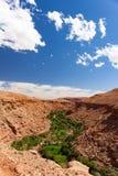 Ounilla dal, Marocko, högt kartboklandskap Arganträd på th Royaltyfri Foto