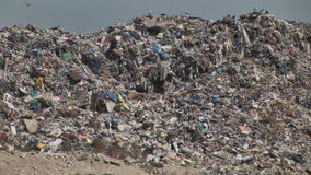 Ountain of garbage waste plastic bottles packages of rotting food. Backgrounds, bird, broken, bulky, cleanup, concepts, conservation, dirt, dirty, dump stock video footage