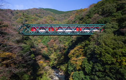Ountain landscape with railway bridge and train in autumn season at Hakone town Royalty Free Stock Image