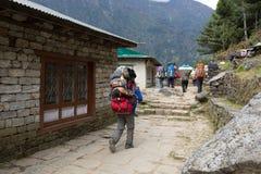 Ountaineers och portvakttrek till den Sagarmatha nationalparken Royaltyfria Foton